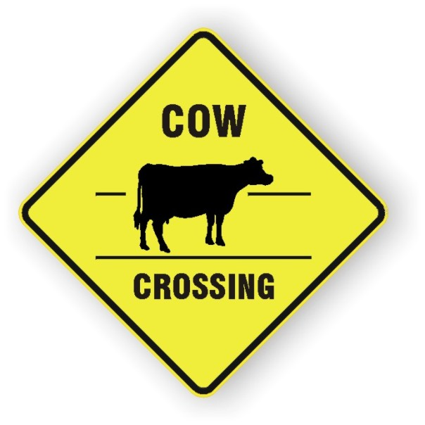 xing_cow