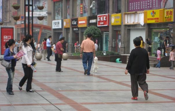 China 2009 253